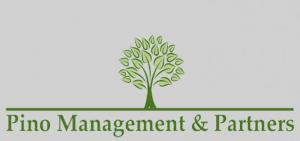 Pino Management & Partners